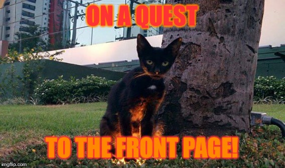 ON A QUEST TO THE FRONT PAGE! | made w/ Imgflip meme maker