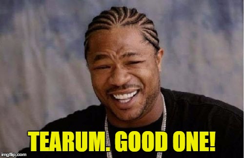 Yo Dawg Heard You Meme | TEARUM. GOOD ONE! | image tagged in memes,yo dawg heard you | made w/ Imgflip meme maker