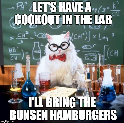 Chemistry Cat | LET'S HAVE A COOKOUT IN THE LAB I'LL BRING THE BUNSEN HAMBURGERS | image tagged in memes,chemistry cat | made w/ Imgflip meme maker