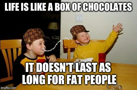 Yo Mamas So Fat Meme | LIFE IS LIKE A BOX OF CHOCOLATES IT DOESN'T LAST AS LONG FOR FAT PEOPLE | image tagged in memes,yo mamas so fat,scumbag | made w/ Imgflip meme maker