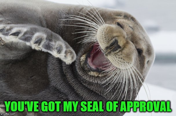 YOU'VE GOT MY SEAL OF APPROVAL | made w/ Imgflip meme maker