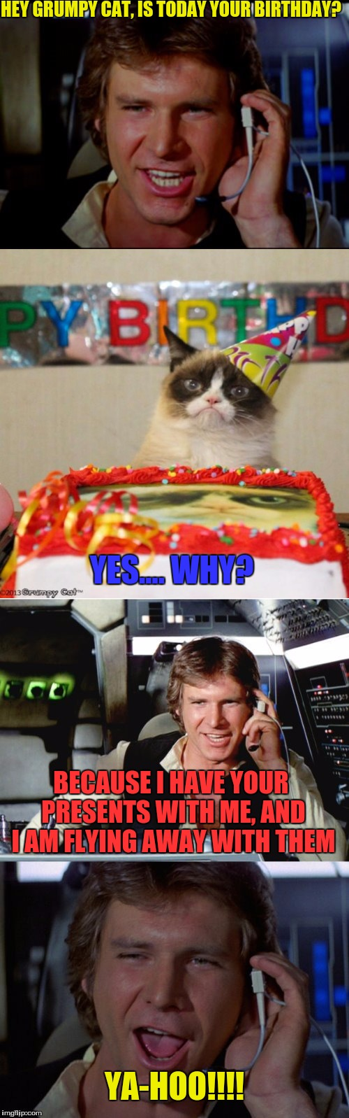 Here is an idea I got from a template Dashhopes made :) | HEY GRUMPY CAT, IS TODAY YOUR BIRTHDAY? BECAUSE I HAVE YOUR PRESENTS WITH ME, AND I AM FLYING AWAY WITH THEM YES.... WHY? YA-HOO!!!! | image tagged in bad pun han solo,dashhopes,grumpycat,star wars,han solo | made w/ Imgflip meme maker