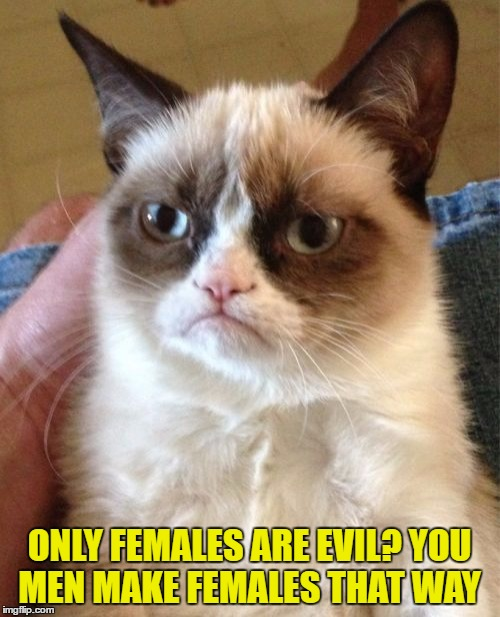 Grumpy Cat Meme | ONLY FEMALES ARE EVIL? YOU MEN MAKE FEMALES THAT WAY | image tagged in memes,grumpy cat | made w/ Imgflip meme maker