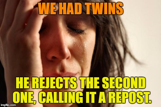 Twins | WE HAD TWINS HE REJECTS THE SECOND ONE, CALLING IT A REPOST. | image tagged in memes,first world problems,funny,repost,twins,humor | made w/ Imgflip meme maker