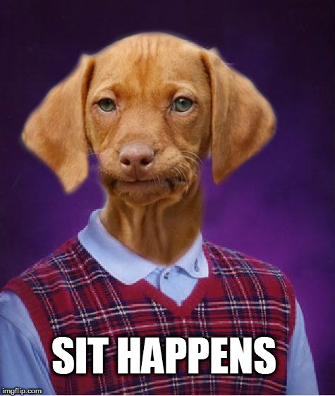 Bad Luck Raydog | SIT HAPPENS | image tagged in bad luck raydog | made w/ Imgflip meme maker