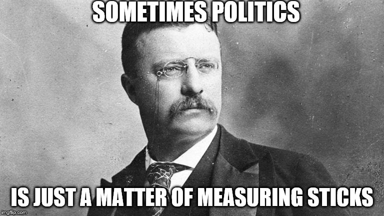 SOMETIMES POLITICS IS JUST A MATTER OF MEASURING STICKS | image tagged in the talented mr roosevelt | made w/ Imgflip meme maker