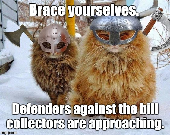 Vikings | Brace yourselves. Defenders against the bill collectors are approaching. | image tagged in vikings | made w/ Imgflip meme maker