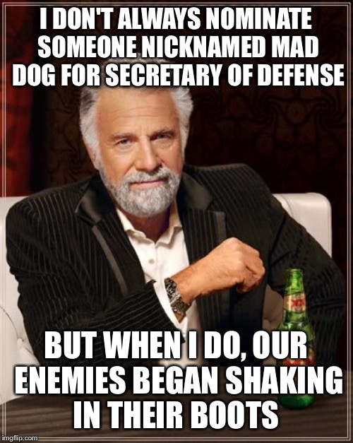 The Most Interesting Man In The World Meme | I DON'T ALWAYS NOMINATE SOMEONE NICKNAMED MAD DOG FOR SECRETARY OF DEFENSE BUT WHEN I DO, OUR ENEMIES BEGAN SHAKING IN THEIR BOOTS | image tagged in memes,the most interesting man in the world | made w/ Imgflip meme maker