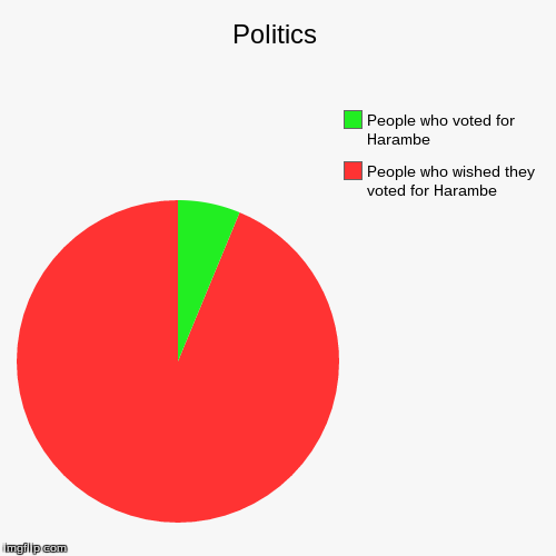 Politics | People who wished they voted for Harambe, People who voted for Harambe | image tagged in funny,pie charts | made w/ Imgflip chart maker