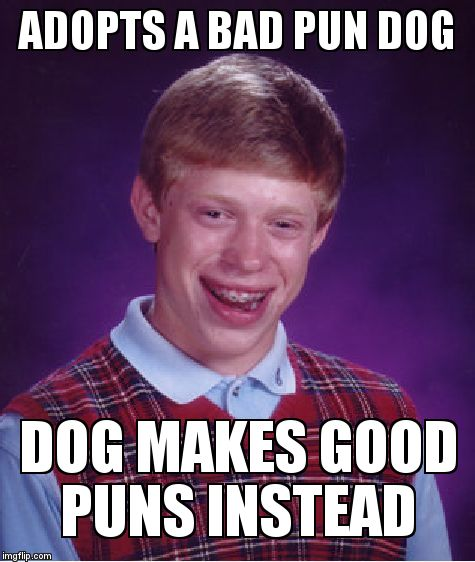 Bad Luck Brian Meme | ADOPTS A BAD PUN DOG DOG MAKES GOOD PUNS INSTEAD | image tagged in memes,bad luck brian | made w/ Imgflip meme maker
