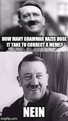 Bad Pun Hitler  | HOW MANY GRAMMAR NAZIS DOSE IT TAKE TO CORRECT A MEME? NEIN | image tagged in bad pun hitler,grammar nazi,nein | made w/ Imgflip meme maker