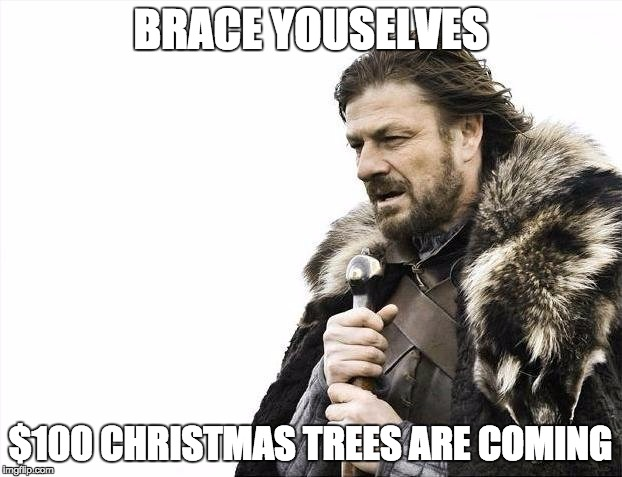So this is why my budget is low low... | BRACE YOUSELVES $100 CHRISTMAS TREES ARE COMING | image tagged in memes,brace yourselves x is coming | made w/ Imgflip meme maker