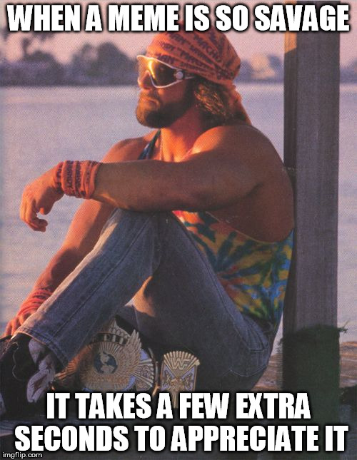 Randy Savage |  WHEN A MEME IS SO SAVAGE; IT TAKES A FEW EXTRA SECONDS TO APPRECIATE IT | image tagged in randy savage | made w/ Imgflip meme maker