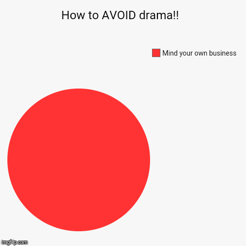 How to AVOID drama!!  | Mind your own business | image tagged in funny,pie charts | made w/ Imgflip pie chart maker