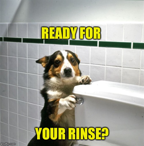 READY FOR YOUR RINSE? | made w/ Imgflip meme maker