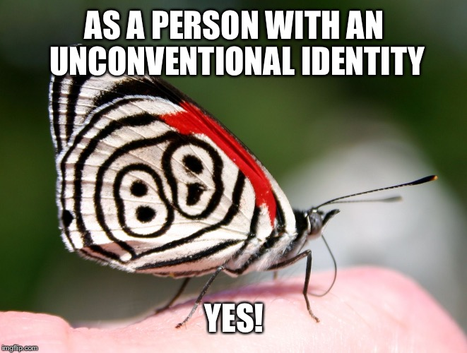 Puzzle Solver Butterfly | AS A PERSON WITH AN UNCONVENTIONAL IDENTITY YES! | image tagged in puzzle solver butterfly | made w/ Imgflip meme maker