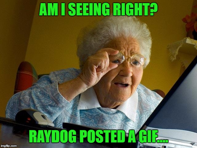 Grandma Finds The Internet Meme | AM I SEEING RIGHT? RAYDOG POSTED A GIF.... | image tagged in memes,grandma finds the internet | made w/ Imgflip meme maker