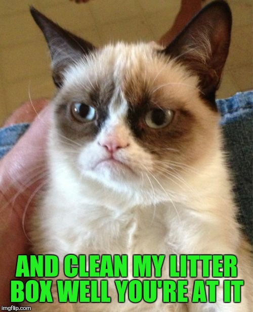 Grumpy Cat Meme | AND CLEAN MY LITTER BOX WELL YOU'RE AT IT | image tagged in memes,grumpy cat | made w/ Imgflip meme maker