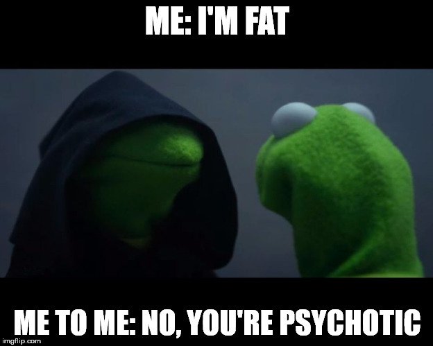 me to me reverse | ME: I'M FAT ME TO ME: NO, YOU'RE PSYCHOTIC | image tagged in me to me reverse | made w/ Imgflip meme maker
