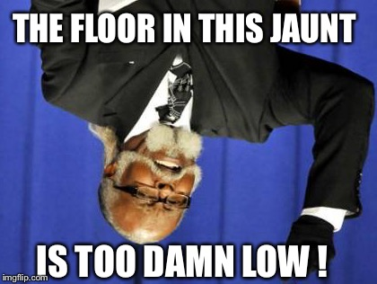 Upside-down meme weekend :-) Too Damn Low ! | THE FLOOR IN THIS JAUNT IS TOO DAMN LOW ! | image tagged in memes,too damn high,too damn low,upside-down weekend,upside-down | made w/ Imgflip meme maker