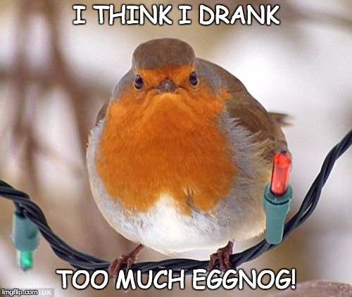 Bah Humbug | I THINK I DRANK TOO MUCH EGGNOG! | image tagged in memes,bah humbug | made w/ Imgflip meme maker
