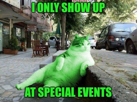 RayCat relaxing | I ONLY SHOW UP AT SPECIAL EVENTS | image tagged in raycat relaxing | made w/ Imgflip meme maker
