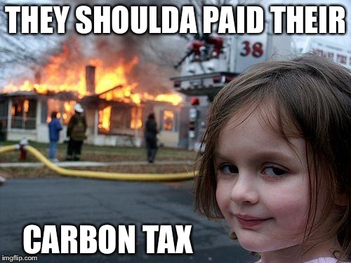 Disaster Girl Meme | THEY SHOULDA PAID THEIR CARBON TAX | image tagged in memes,disaster girl | made w/ Imgflip meme maker