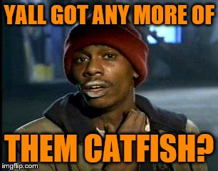 Y'all Got Any More Of That Meme | YALL GOT ANY MORE OF THEM CATFISH? | image tagged in memes,yall got any more of | made w/ Imgflip meme maker