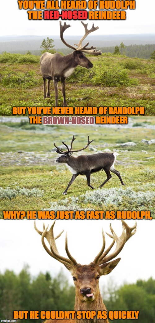 An Unsung Hero | YOU'VE ALL HEARD OF RUDOLPH THE RED-NOSED REINDEER BUT HE COULDN'T STOP AS QUICKLY WHY? HE WAS JUST AS FAST AS RUDOLPH, BUT YOU'VE NEVER HEA | image tagged in rudolph,reindeer | made w/ Imgflip meme maker