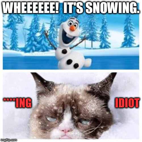 No more snow  |  WHEEEEEE!  IT'S SNOWING. ****ING                                          IDIOT | image tagged in no more snow | made w/ Imgflip meme maker