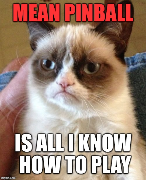 Grumpy Cat Meme | MEAN PINBALL IS ALL I KNOW HOW TO PLAY | image tagged in memes,grumpy cat | made w/ Imgflip meme maker