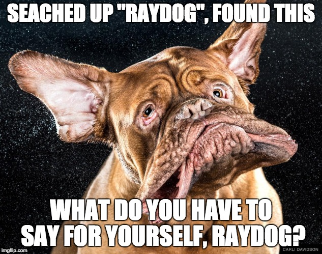 "RAYDOG EXPOSED!! | SEACHED UP ""RAYDOG"", FOUND THIS WHAT DO YOU HAVE TO SAY FOR YOURSELF, RAYDOG? 