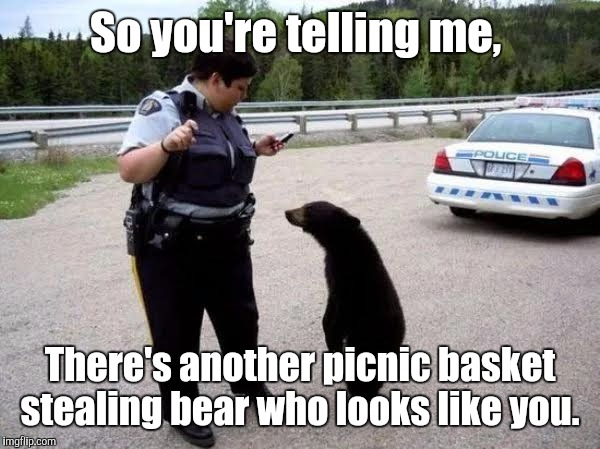 Cop With Cub | So you're telling me, There's another picnic basket stealing bear who looks like you. | image tagged in cop with cub | made w/ Imgflip meme maker