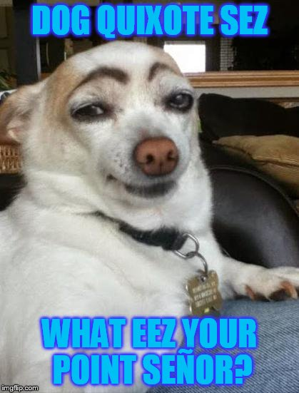 Dog Quixote sez: I do not always lick myself, but when I do, do not be envious señor. | DOG QUIXOTE SEZ WHAT EEZ YOUR POINT SEÑOR? | image tagged in dog memes,eyebrows,hot dog,that look,chihuahua,memes | made w/ Imgflip meme maker
