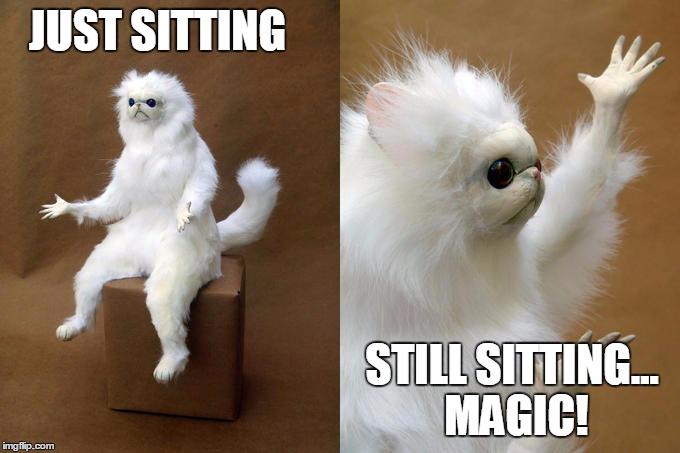 1fb96b persian cat room guardian meme imgflip