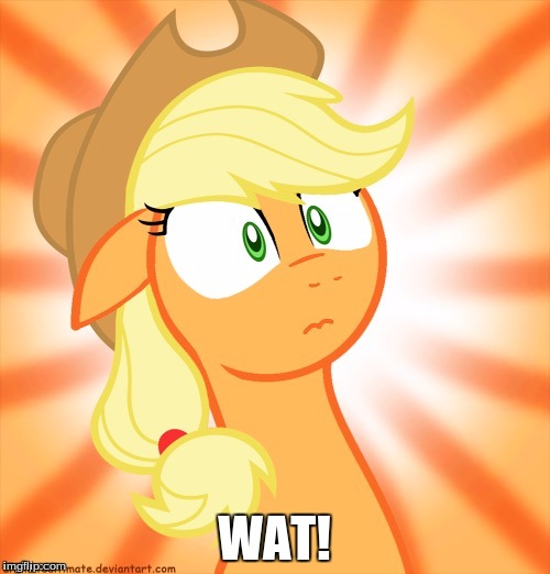 Shocked Applejack | WAT! | image tagged in shocked applejack | made w/ Imgflip meme maker