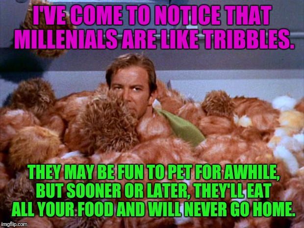 Kirk Tribbles | I'VE COME TO NOTICE THAT MILLENIALS ARE LIKE TRIBBLES. THEY MAY BE FUN TO PET FOR AWHILE, BUT SOONER OR LATER, THEY'LL EAT ALL YOUR FOOD AND | image tagged in kirk tribbles,millennials | made w/ Imgflip meme maker