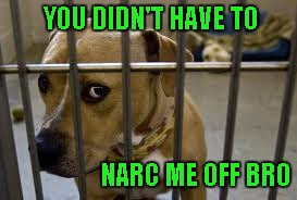 YOU DIDN'T HAVE TO NARC ME OFF BRO | made w/ Imgflip meme maker
