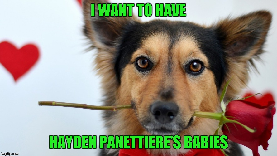 I WANT TO HAVE HAYDEN PANETTIERE'S BABIES | made w/ Imgflip meme maker