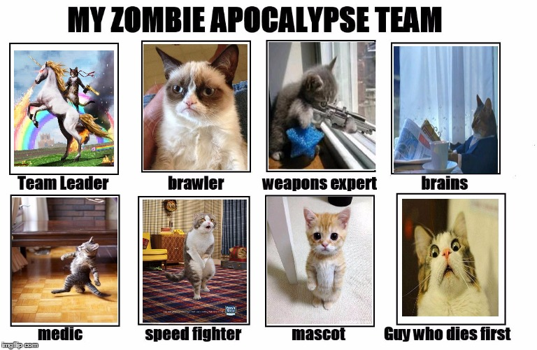 My Zombie Apocalypse Team | image tagged in my zombie apocalypse team,memes,cats | made w/ Imgflip meme maker