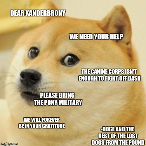 Doge Meme | DEAR XANDERBRONY WE NEED YOUR HELP PLEASE BRING THE PONY MILITARY WE WILL FOREVER BE IN YOUR GRATITUDE -DOGE AND THE REST OF THE LOST DOGS F | image tagged in memes,doge | made w/ Imgflip meme maker