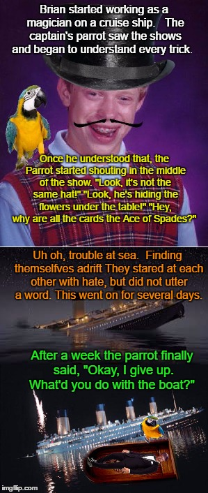 Brian Tries Magic | Brian started working as a magician on a cruise ship.   The captain's parrot saw the shows and began to understand every trick. Once he unde | image tagged in memes,brian,funny,ocean,fun,parrot | made w/ Imgflip meme maker