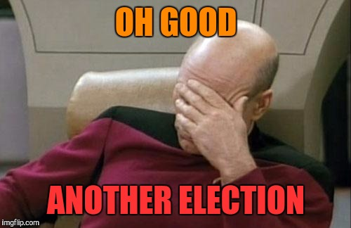 Captain Picard Facepalm Meme | OH GOOD ANOTHER ELECTION | image tagged in memes,captain picard facepalm | made w/ Imgflip meme maker