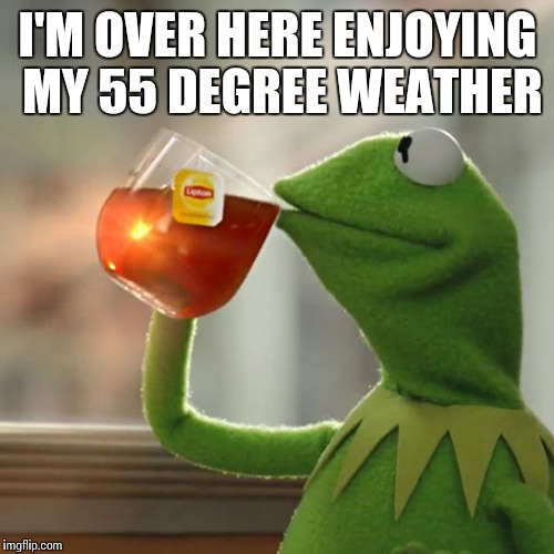 But Thats None Of My Business Meme | I'M OVER HERE ENJOYING MY 55 DEGREE WEATHER | image tagged in memes,but thats none of my business,kermit the frog | made w/ Imgflip meme maker