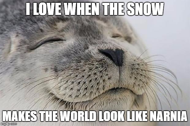 Love That Perfect Kind Of Snow That Clings To All The Tree Branches :) | I LOVE WHEN THE SNOW MAKES THE WORLD LOOK LIKE NARNIA | image tagged in memes,satisfied seal,narnia,snow | made w/ Imgflip meme maker