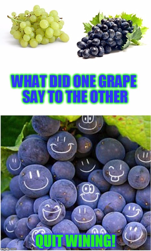 Keep It Bottled Up | WHAT DID ONE GRAPE SAY TO THE OTHER QUIT WINING! | image tagged in meme,bad pun grapes,shabbyrose2 template,shabbyrose template,complainers | made w/ Imgflip meme maker