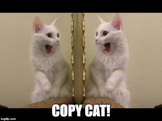 COPY CAT! | made w/ Imgflip meme maker