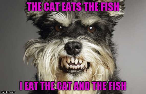 THE CAT EATS THE FISH I EAT THE CAT AND THE FISH | made w/ Imgflip meme maker