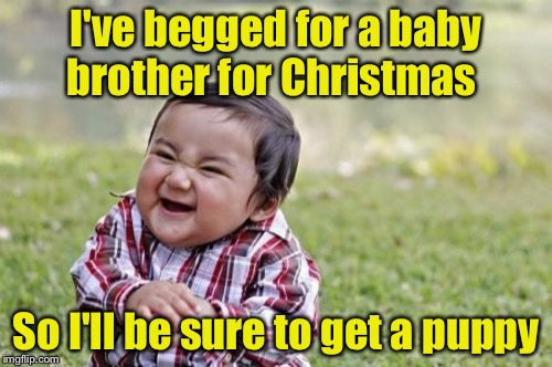 How to get a puppy for Christmas  | I've begged for a baby brother for Christmas So I'll be sure to get a puppy | image tagged in memes,evil toddler | made w/ Imgflip meme maker
