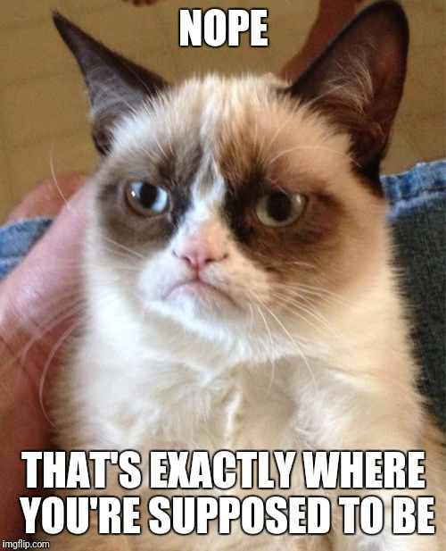 Grumpy Cat Meme | NOPE THAT'S EXACTLY WHERE YOU'RE SUPPOSED TO BE | image tagged in memes,grumpy cat | made w/ Imgflip meme maker